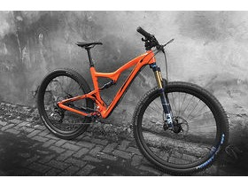 IBIS CYCLES Ripley LS XT 1X Werks click to zoom image