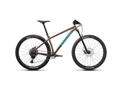 SANTA CRUZ Chameleon 29 D Build